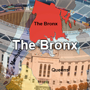 Services - The Bronx